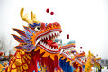 Image : Dragon dance happy  fantasy