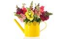 Dragon Flowers In Purple Vase