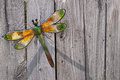 Dragon fly on fence decorator a wooden Stock Photos