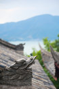 Dragon head sculpture on a chinese roof with mountains in the ba Royalty Free Stock Photo