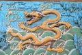 Dragon oriental de ville interdite par Pékin Photographie stock libre de droits