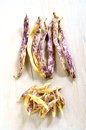 Dragon s tongue beans bunch of purple on white rustic board in vertical format Stock Images