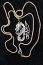 Dragon - a silver necklace. Royalty Free Stock Photo