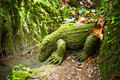 Dragon stone sculpture covered with moss in a rainforest