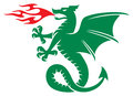 Dragon symbol sign vector Royalty Free Stock Photo