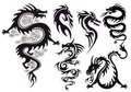 Dragon tattoo, vector Stock Photos