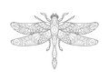Dragonfly coloring book for adults vector Royalty Free Stock Photo