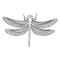 Dragonfly Insect Graphic Art B...