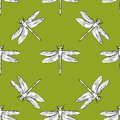 Dragonfly seamless pattern vector hand drawn illustration Royalty Free Stock Photo