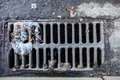 Drain grate with the garbage Royalty Free Stock Photo