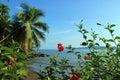 Drake bay view to osa peninsula costa rica Royalty Free Stock Photo