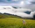 Dramatic cloudsand Daylily flower Royalty Free Stock Photo
