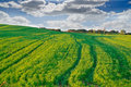 Dramatic sky and green meadow Stock Photos