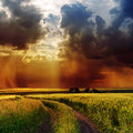 Dramatic sky over road in green field Royalty Free Stock Photos