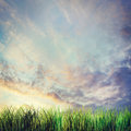 Dramatic summer landscape with sunset cloudy sky and grass Royalty Free Stock Photo