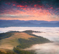 Dramatic summer sunrise over the sea of fog Stock Photography