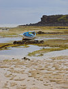 Dramatic Texture of Beach during Low Tide resembling random vein pattern with wooden boats and house in the background Royalty Free Stock Photo