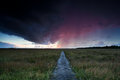 Dramatic thunderstorm over path through swamps drenthe Stock Images