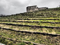 Dramatic view up the spectator steps surrounding the former nazi party rally grounds in tones nuremberg germany Royalty Free Stock Photo