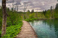 Dramatic wildness view in Plitvice National Park, Croatia Royalty Free Stock Photo