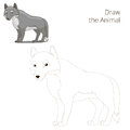 Draw The Forest Animal Wolf Ca...