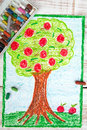 Drawing: apple tree Royalty Free Stock Photo