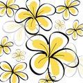 Drawing Frangipani background Royalty Free Stock Photo