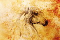 Drawing horse on old paper, original hand draw. Color effect. Royalty Free Stock Photo