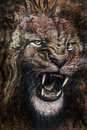 Drawing of lion roaring Royalty Free Stock Photo