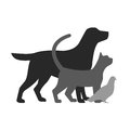 Drawing of pets monochrome illustration.