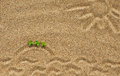 Drawing sun waves and island on the sand with green plants Royalty Free Stock Photos