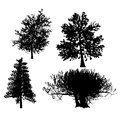 Drawing of the tree vector llustration Royalty Free Stock Image