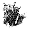Drawing of a wild horse with a foal on the neck ,sketch illustration