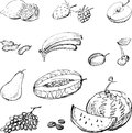 Drawn fruit Stock Photos