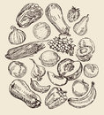 Drawn Fruits And Vegetables