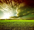 Dreamscape green fields sunset landscape meadows Stock Photography