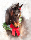 Dreamy Christmas image of a dark bay Arabian horse Stock Image