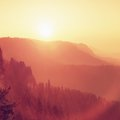 Dreamy dayreak in landscape, spring orange pink misty sunrise in a beautiful valley of rocky mountains park. Royalty Free Stock Photo