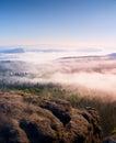 Dreamy Misty Forest  Landscape...