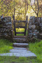Dreamy path and gate way in woodland evening light with lens flare Stock Photo
