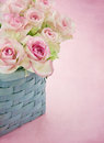 Dreamy romantic pink roses in a blue old basket on pastel color textured background Royalty Free Stock Photo
