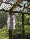 Dress drying on hanger Stock Photos