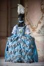 Dress Of Marie Antoinette