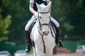Dressage small dof white horse and rider at Royalty Free Stock Photography