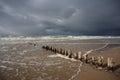 Drewniani plażowi Baltic pale Fotografia Royalty Free