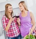 Dricka wine för kök för kvinnligvänner joyful Arkivbilder