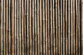 Dried bamboo background of stalks Stock Photo