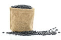 Dried black beans in sacks fodder close up on white background Stock Images