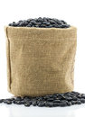 Dried black beans in sacks fodder close up on white background Royalty Free Stock Image