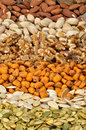 Dried cereal seeds and fruits Royalty Free Stock Photo